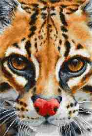 Leopardus Pardalis, Counted Cross Stitch Kit Luca-s BU4008