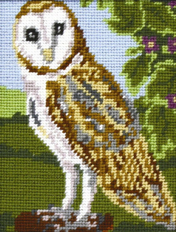 Owl Tapestry Kit, Needlepoint Starter, Anchor MR925