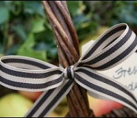Chocolate and Butterscotch Stripe Grosgrain Ribbon -15mm