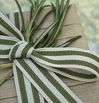 Sage Green and Cream Stripe Grosgrain Ribbon -15mm