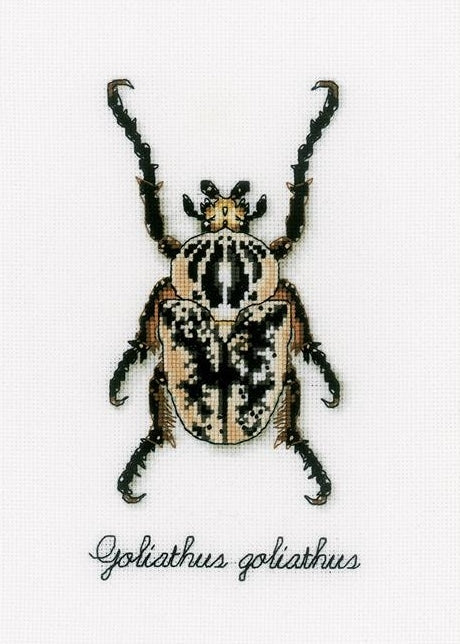 Beige Beetle Counted Cross Stitch Kit, Vervaco pn-0165400