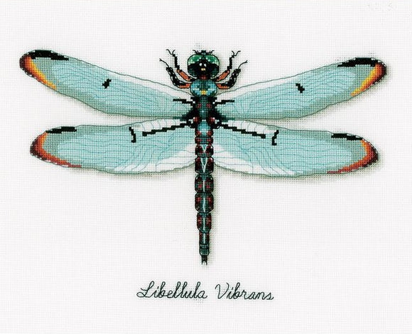 Dragonfly Counted Cross Stitch Kit, Vervaco pn-0165453