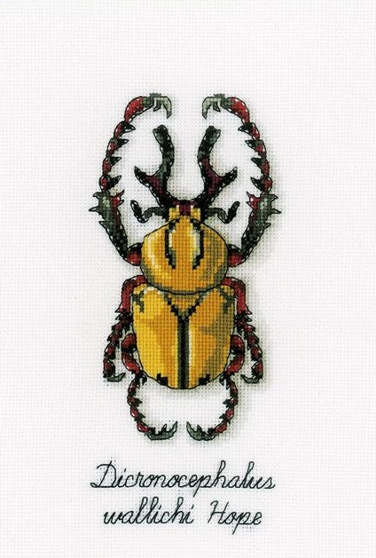 Golden Beetle Counted Cross Stitch Kit, Vervaco pn-0165220