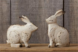 Large Bunnies - Sitting