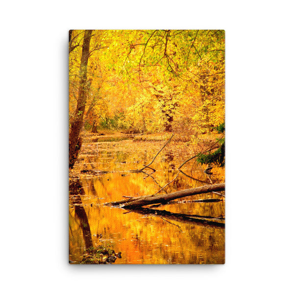 Framed Canvas Print - Golden Rain Forest  - Canvas Prints  - WallzRus Decor