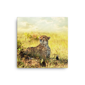 Framed Canvas Print - Leopard in the Wild  - Canvas Prints  - WallzRus Decor