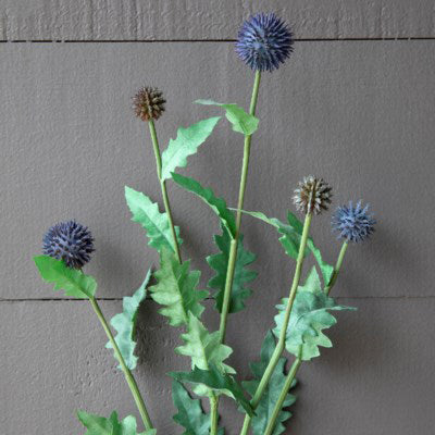 Thistle Stem - Staged Dwellings