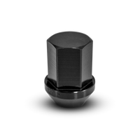 Lightweight Aluminum Lug Nuts - 20 Pack