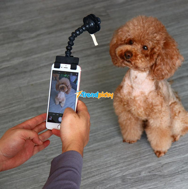BriteDoggie Pet Selfie Stick Black BriteDoggy Pet Selfie Stick trendpicky