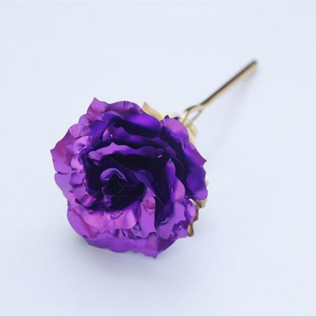 Everlasting Gold Rose Purple Others & Gifts trendpicky