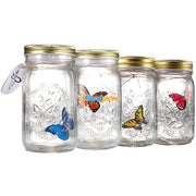 Magic Butterfly Jar Blue Butterfly Magic Butterfly Jar trendpicky