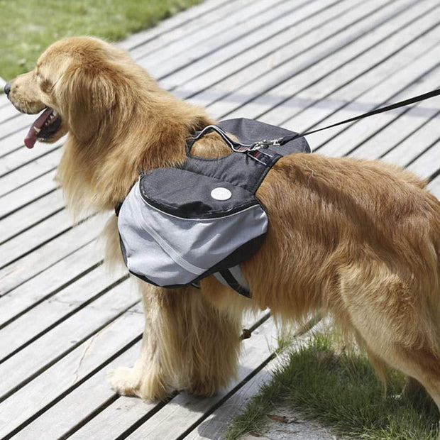 Outdoor Dog Backpack Small / Black Outdoor Dog Backpack trendpicky