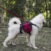 Outdoor Dog Backpack Small / Red Outdoor Dog Backpack trendpicky