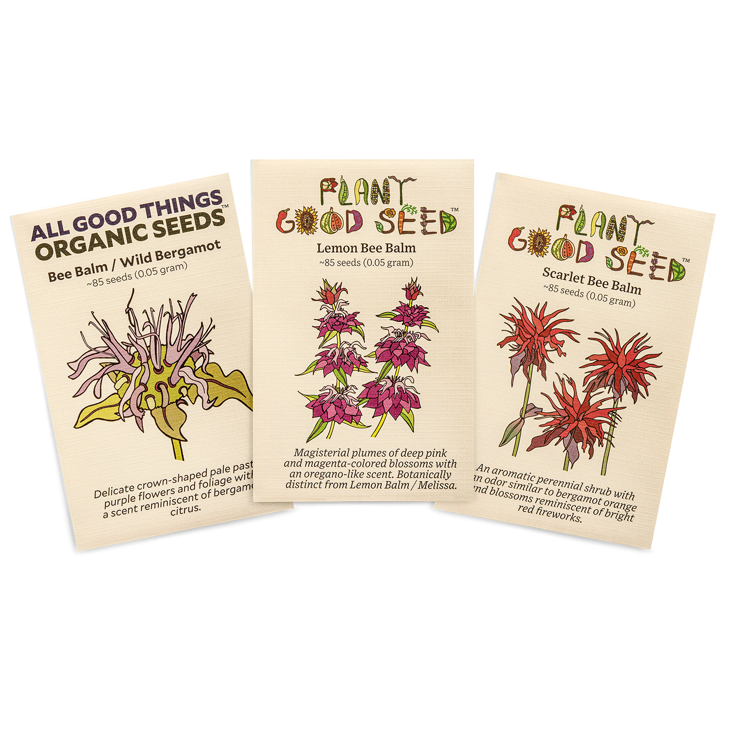 Bee Balm Seed Collection Packets