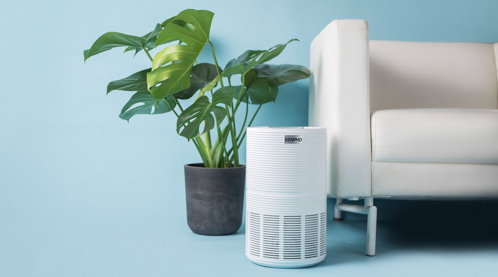 HEPA Air Purifier | Renpho