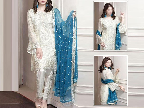 Heavy Embroidered Chiffon Dress (DZ13246)