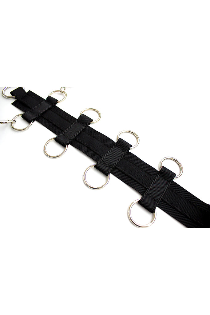 Neck-to-waist Body Harness Restraint with Removable Waist Belt
