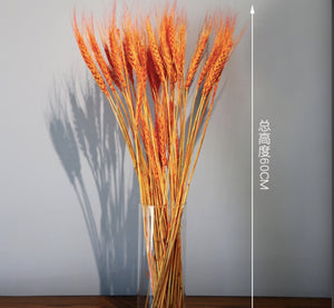 Original color wheat ear simulation bouquet shooting props dried flower bouquet home decoration accessories
