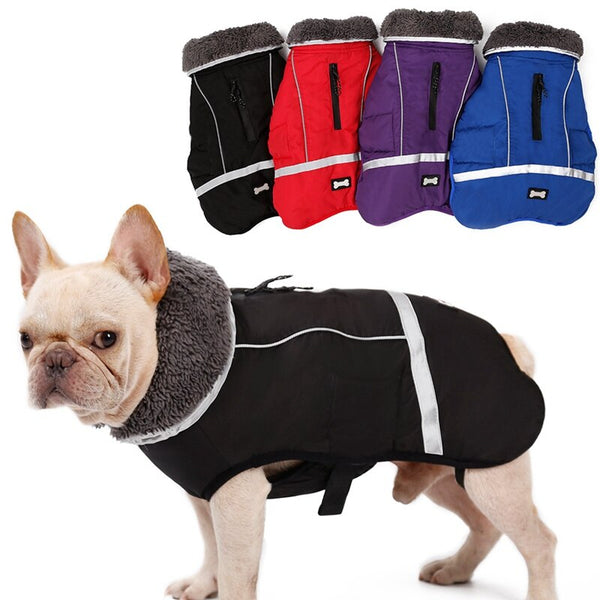 Outdoor warm reflective jacket. - pawslove1