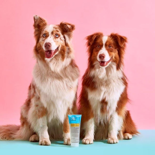 2-in-1 Express Dog Shampoo & Conditioner (Rosemary + Peppermint) - Five And Dime