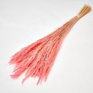 Dried Flowers - Pink Italian Wild Grass