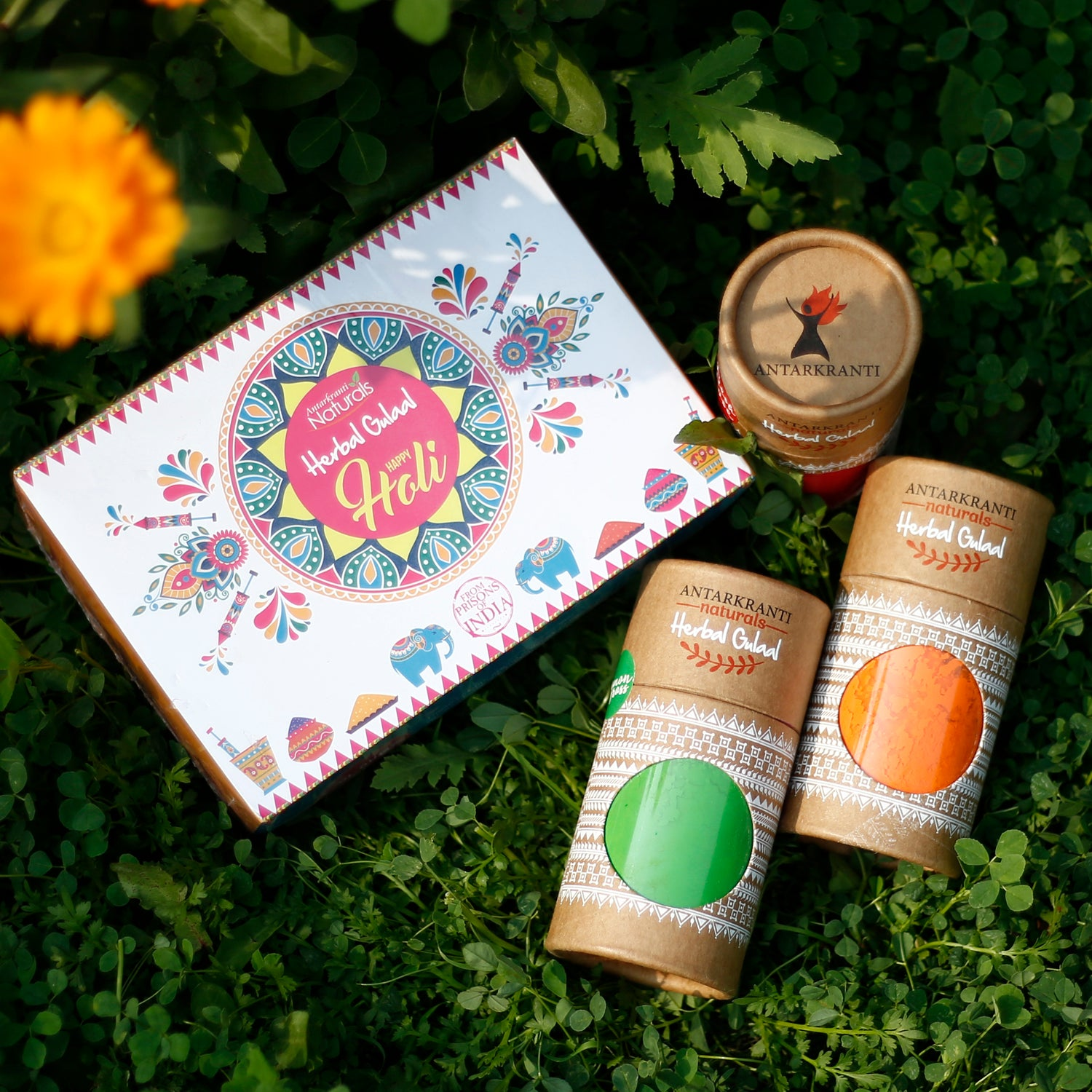 Classic 3 in 1 Gift Set Herbal Holi Gulal. Herbal Holi Color 3 in 1 Gift Set