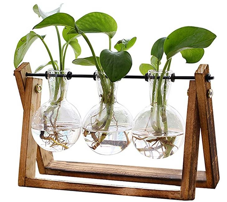 Bulb Glass Planter