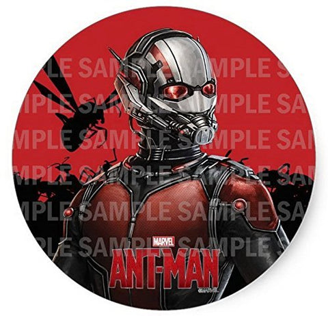 "Ant-man Ant Man Birthday Edible Image Photo 8"" Round Cake Topper Sheet Personalized Custom Customized Birthday Party"