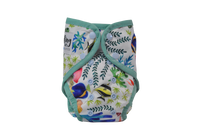 Seedling Baby Paddle Pants (swim nappy) - OSFM