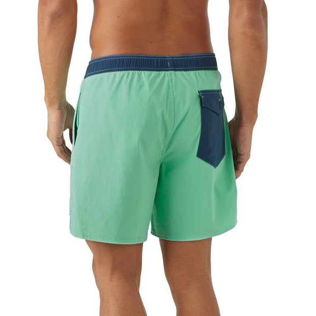 Boardshort-Patagonia-Volley-dos