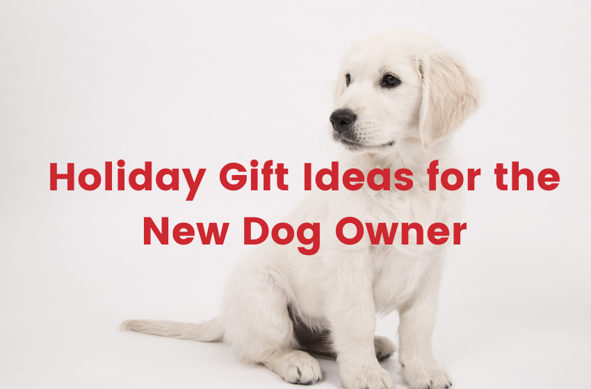Holiday Gift Ideas for the New Dog Owner