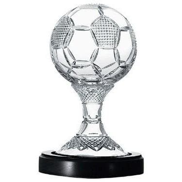"8"" Soccer Ball Trophy Engraved"