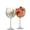 Engraved Erne Gin & Tonic (Pair)