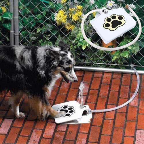Outdoor Pet Water Sprinkler Easy Activated Dog - E.Y.U Store
