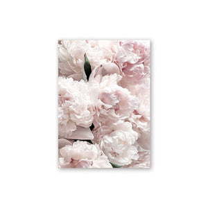 Feather Peony Blossom Canvas Painting Posters And Prints Picture Living Room Art Wall Home Decoration - E.Y.U Store