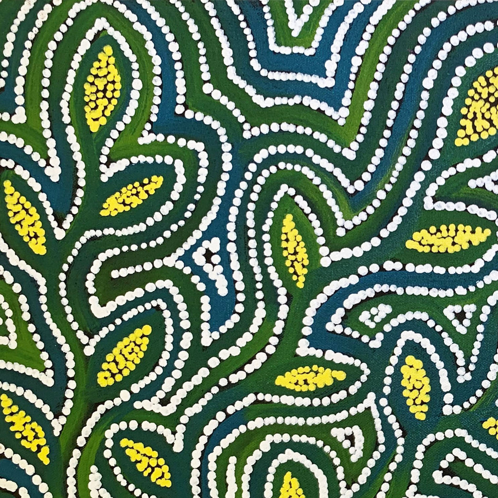 Alicka Napanangka Brown - Bush Potato dreaming - Cockatoo creek 30x30cm