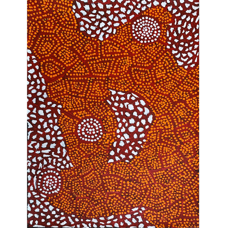 Leedham Jangala Wumi - Country around Kiwikurra 46x30cm