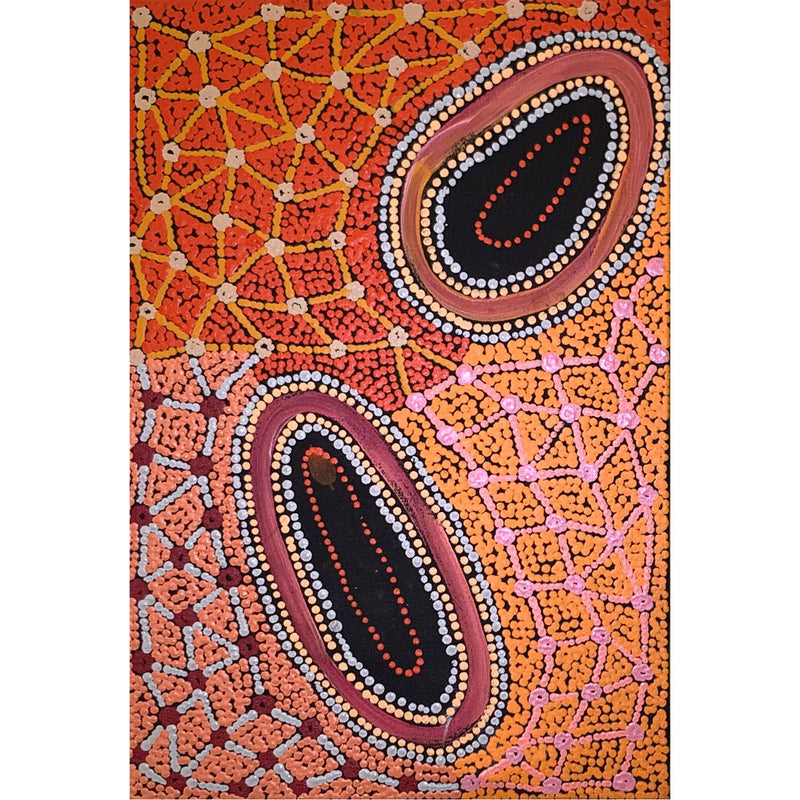 Theo Nangala Hudson - Fire country dreaming 46x30cm