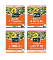 4xPack Kneipp Bladder and Kidney Infection Tea - 40 Bags