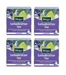 4xPack Kneipp Sage Leave Tea for Indigestion and Inflamation Treatment -  40 Bags
