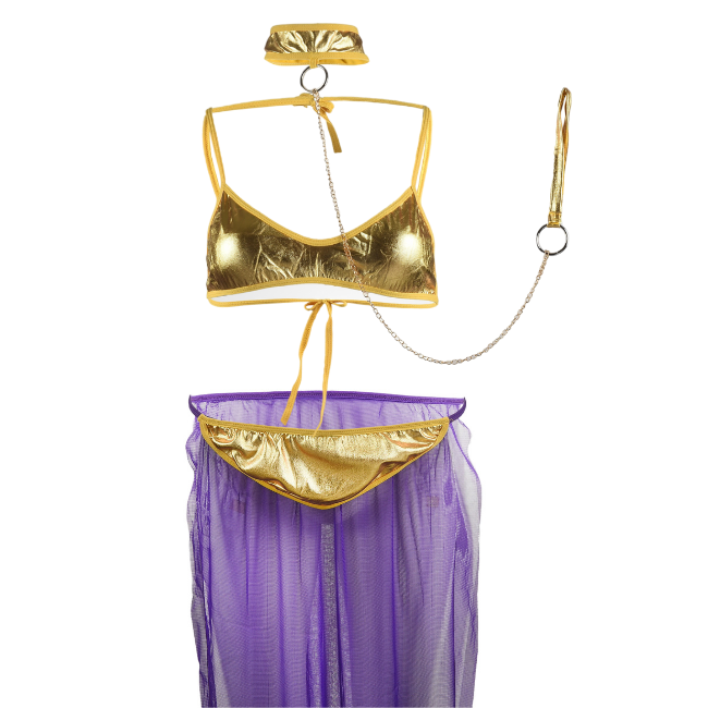Harem Queen, Purple and Gold Matching Belly Dancer Set