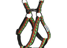 #OCEANDOG Red Sea Adventure Harness