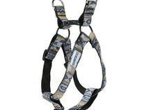 LIMITED EDITION #MOUNTAINDOG Chestnut Hue Harness