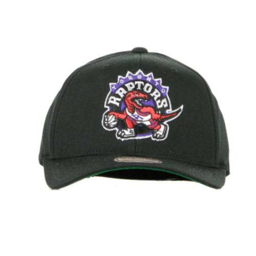 Team Logo High Crown Toronto Raptors