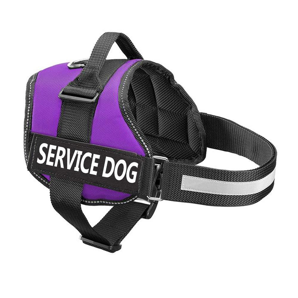 2019-NEW ALL-IN-ONE™ NO PULL DOG HARNESS