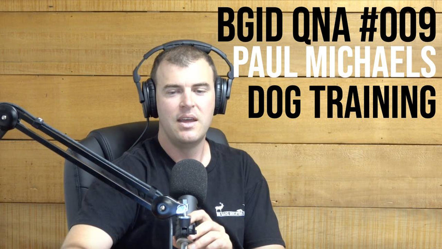 Big Game Indicating Dogs QnA #009