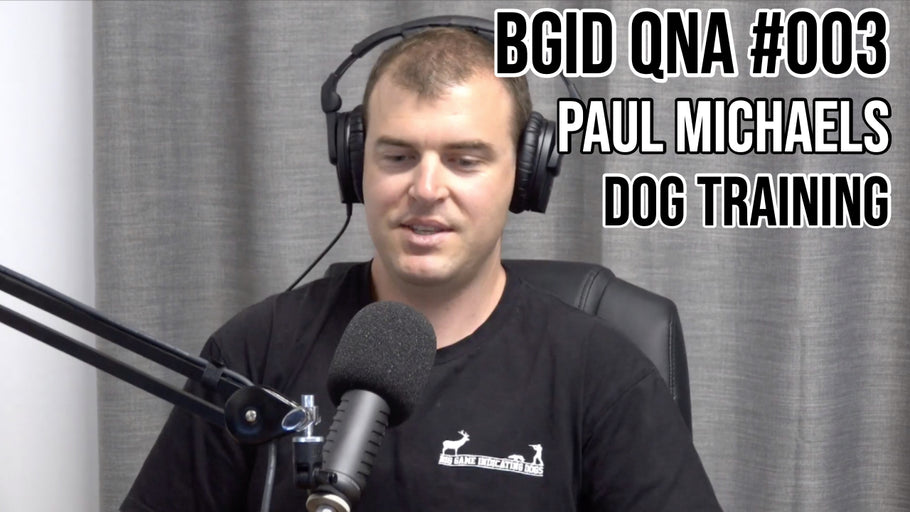 Big Game Indicating Dogs QnA #003
