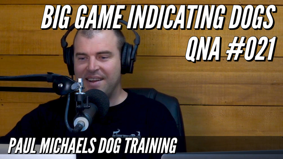 Big Game Indicating Dogs QnA #021