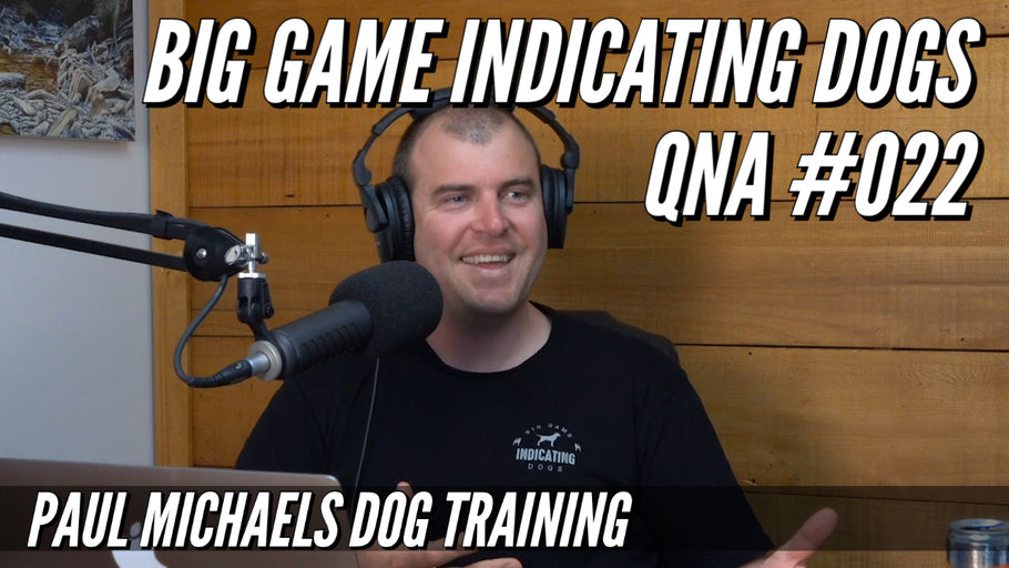 Big Game Indicating Dogs QnA #022