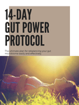 Gut Power Protocol Bundle - Cocoa